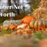 October 2020 Net Worth Update